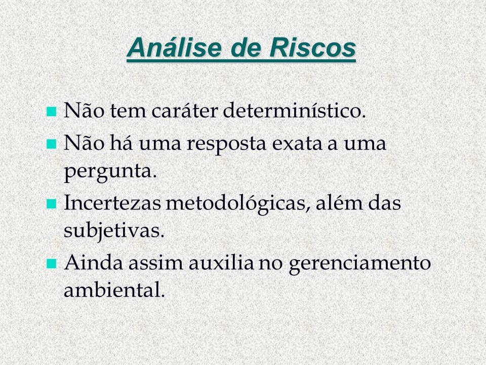 Análise de Riscos Não tem caráter determinístico.