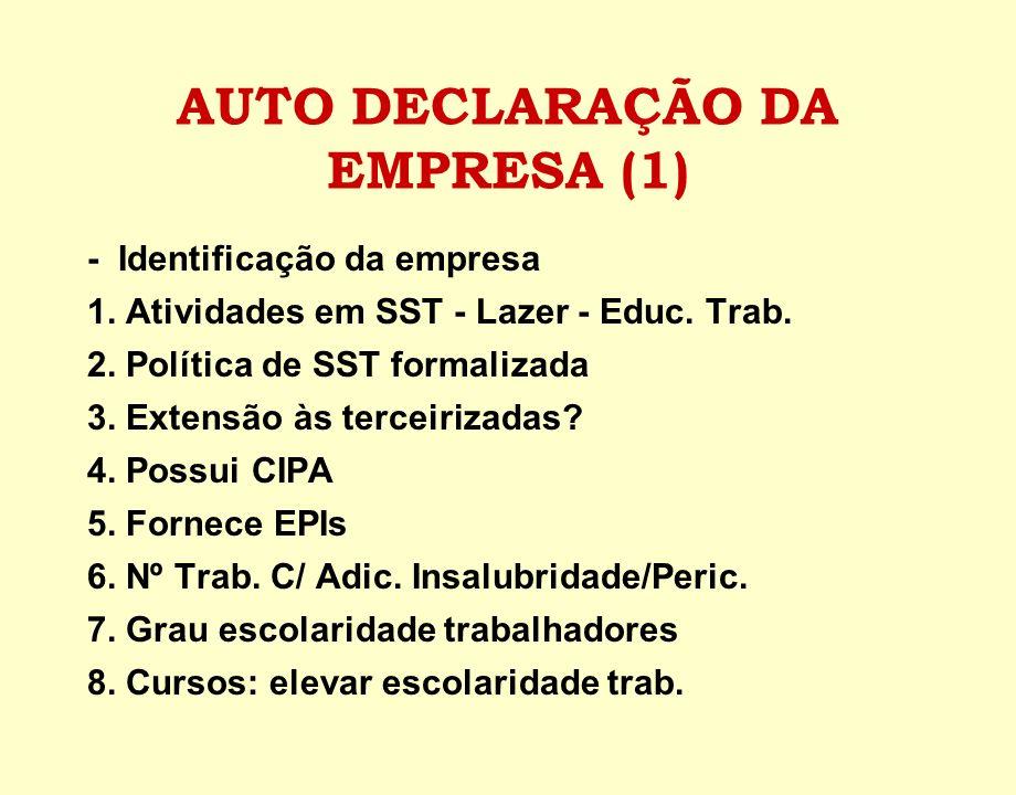 AUTO DECLARAÇÃO DA EMPRESA (1)