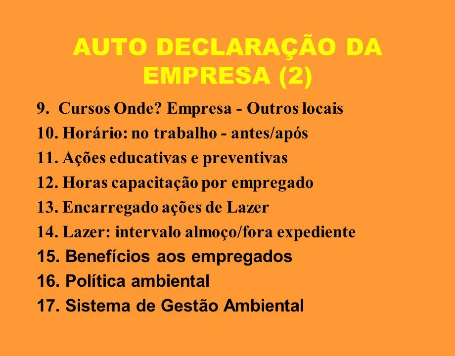 AUTO DECLARAÇÃO DA EMPRESA (2)