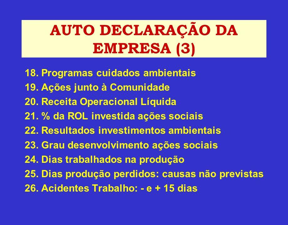 AUTO DECLARAÇÃO DA EMPRESA (3)