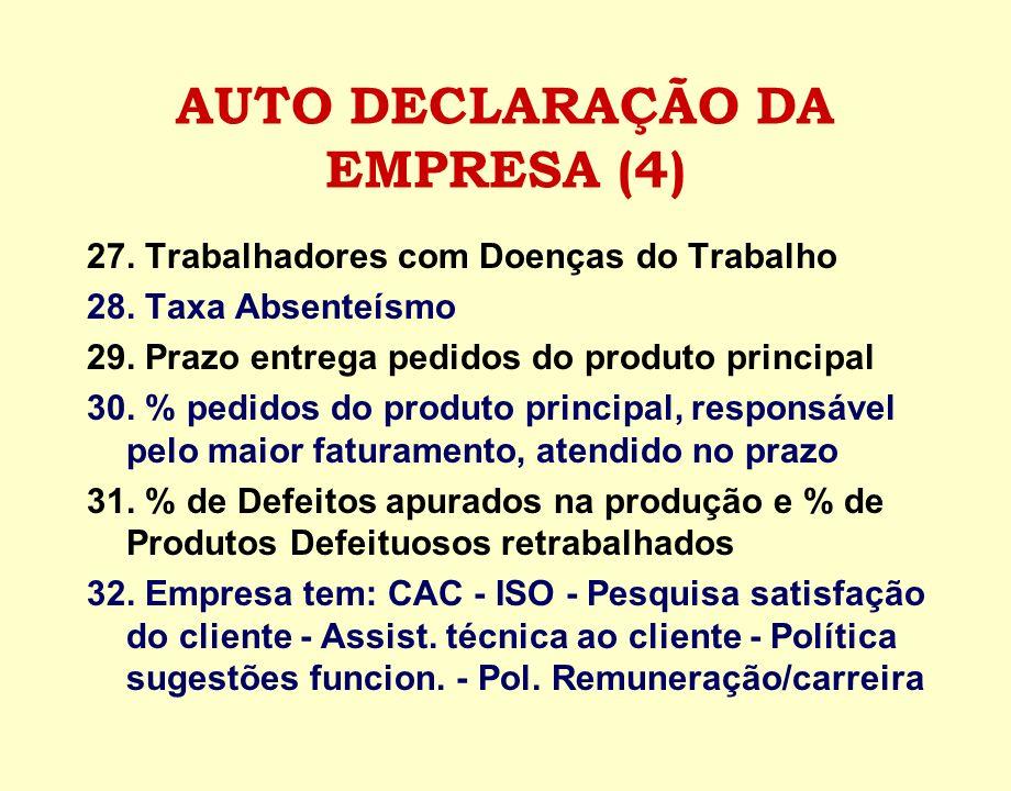 AUTO DECLARAÇÃO DA EMPRESA (4)