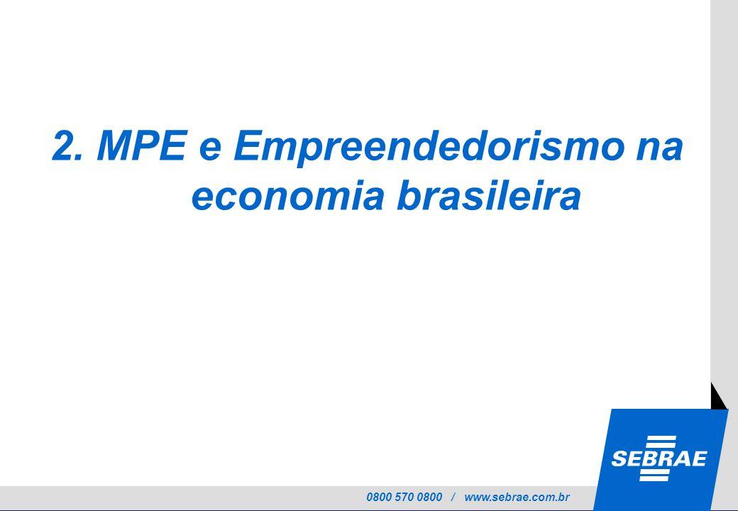 2. MPE e Empreendedorismo na economia brasileira