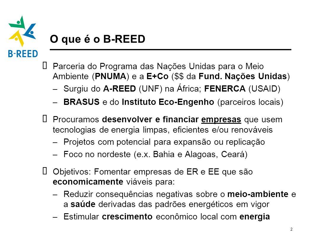 O que é o B-REED Parceria do Programa das Nações Unidas para o Meio Ambiente (PNUMA) e a E+Co ($$ da Fund. Nações Unidas)