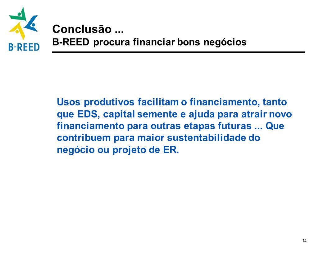 Conclusão ... B-REED procura financiar bons negócios