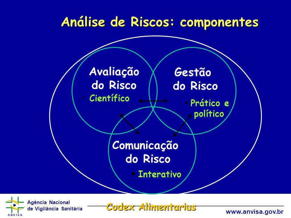 Análise de Riscos: componentes