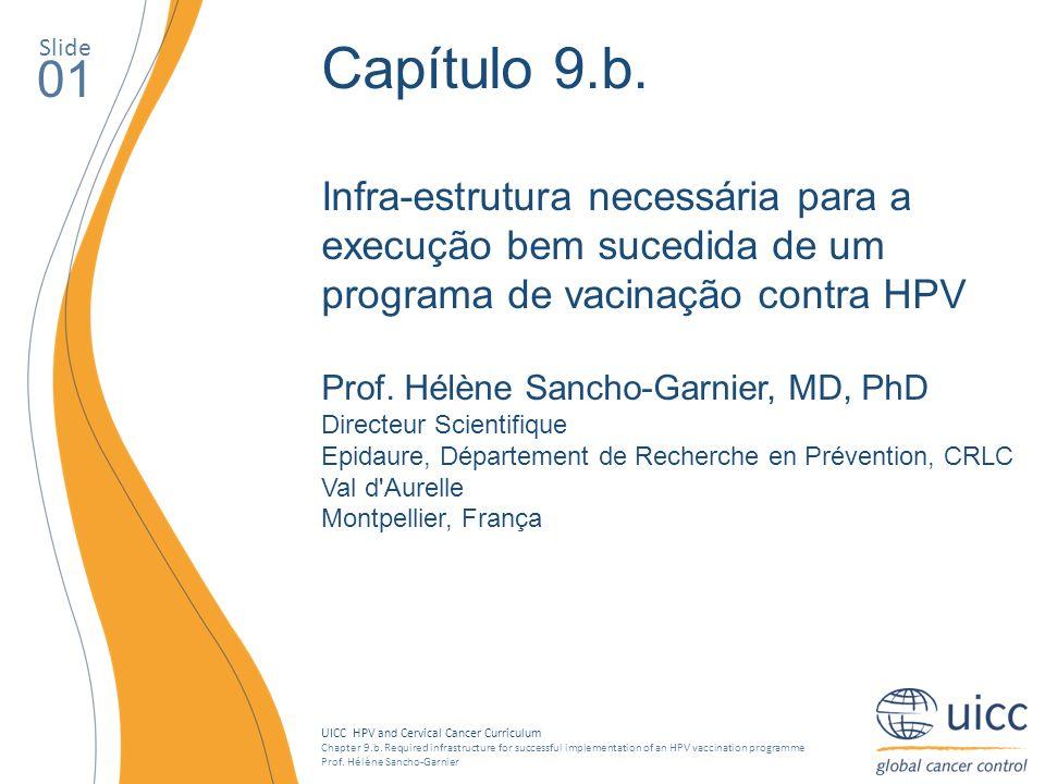 Slide Capítulo 9.b. Infra-estrutura necessária para a execução bem sucedida de um programa de vacinação contra HPV.