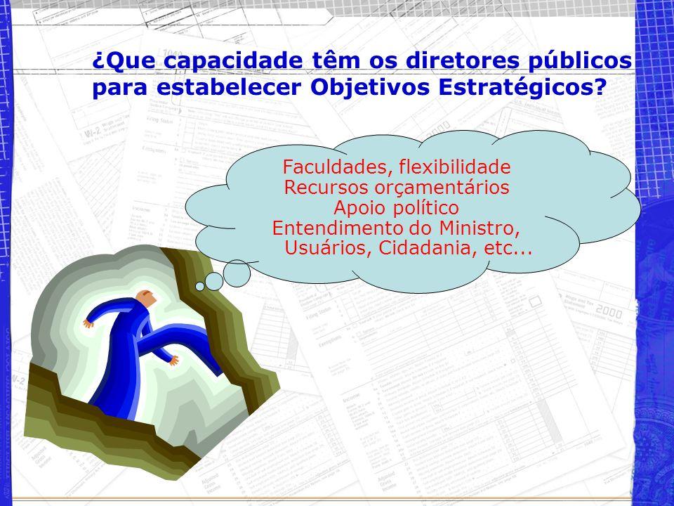¿Que capacidade têm os diretores públicos para estabelecer Objetivos Estratégicos