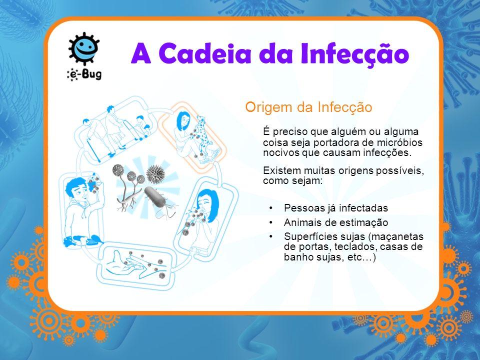 A Cadeia da Infecção Origem da Infecção