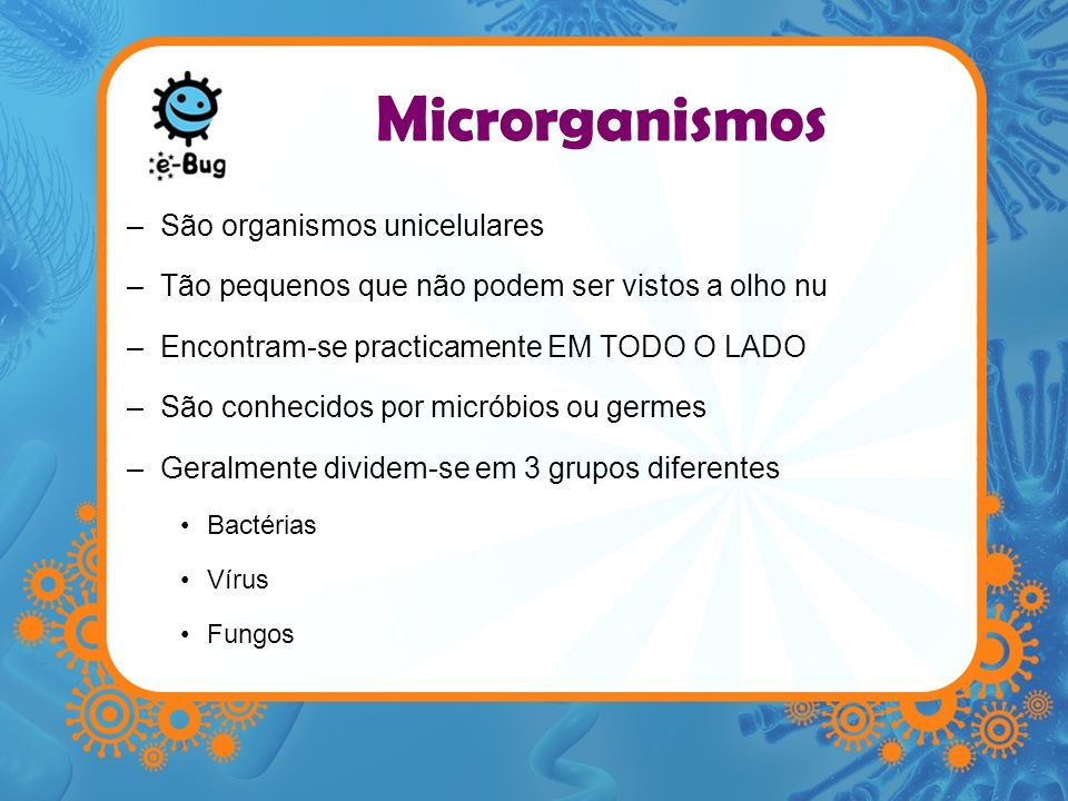Microrganismos São organismos unicelulares