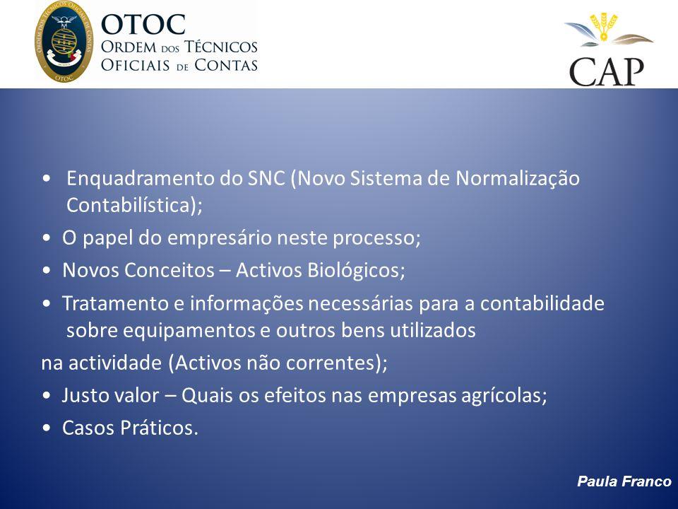 Enquadramento do SNC (Novo Sistema de Normalização Contabilística);