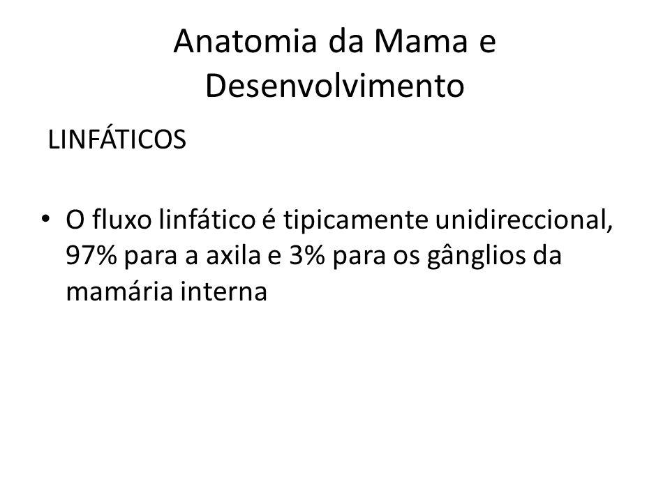 Anatomia da Mama e Desenvolvimento