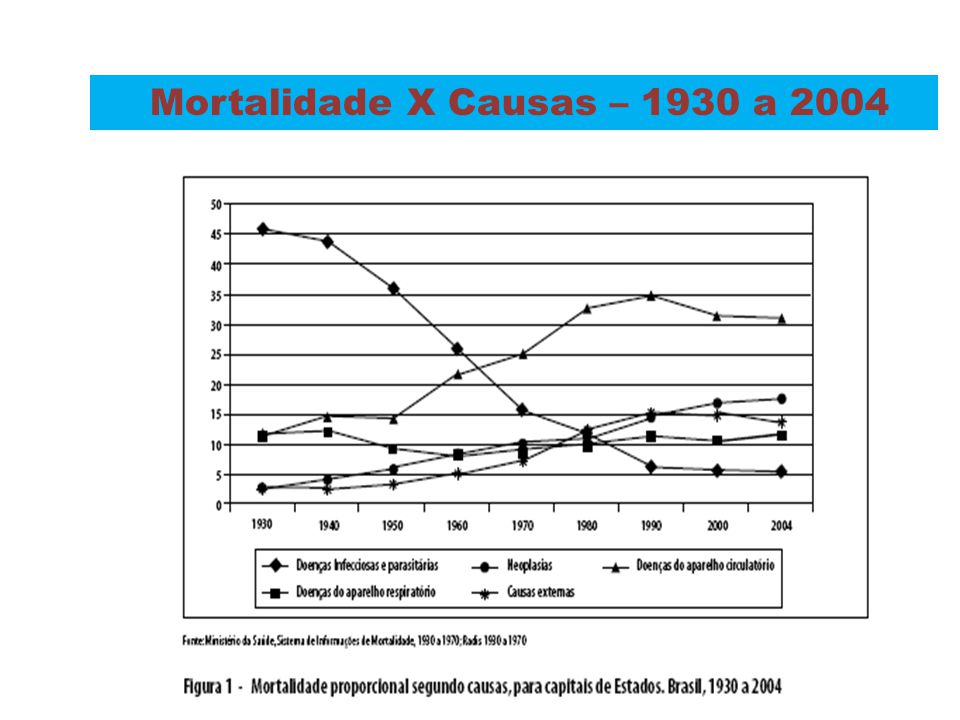 Mortalidade X Causas – 1930 a 2004