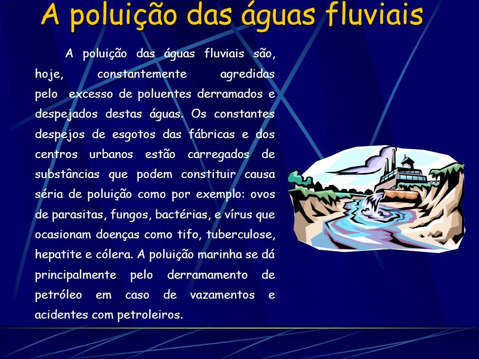 A poluição das águas fluviais