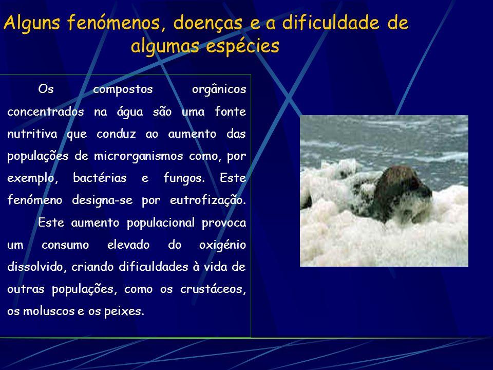 Alguns fenómenos, doenças e a dificuldade de algumas espécies