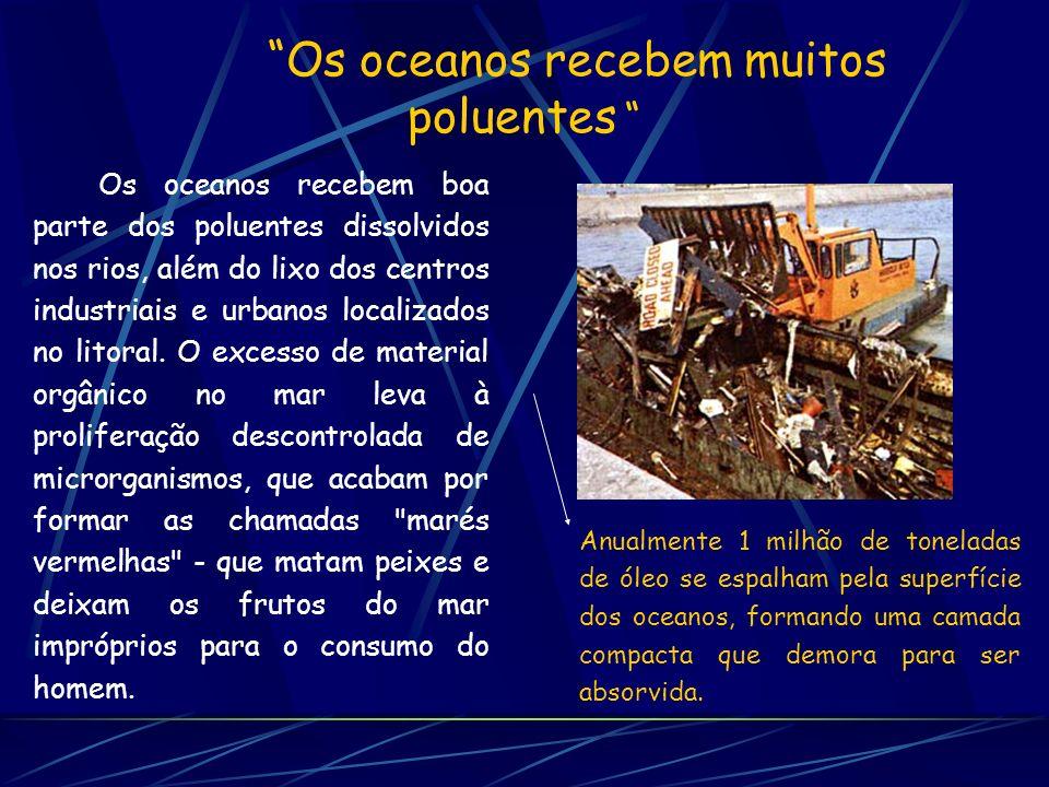 Os oceanos recebem muitos poluentes