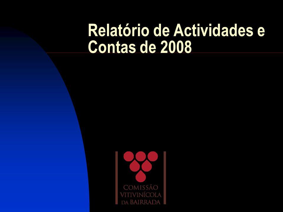 Relatório de Actividades e Contas de 2008