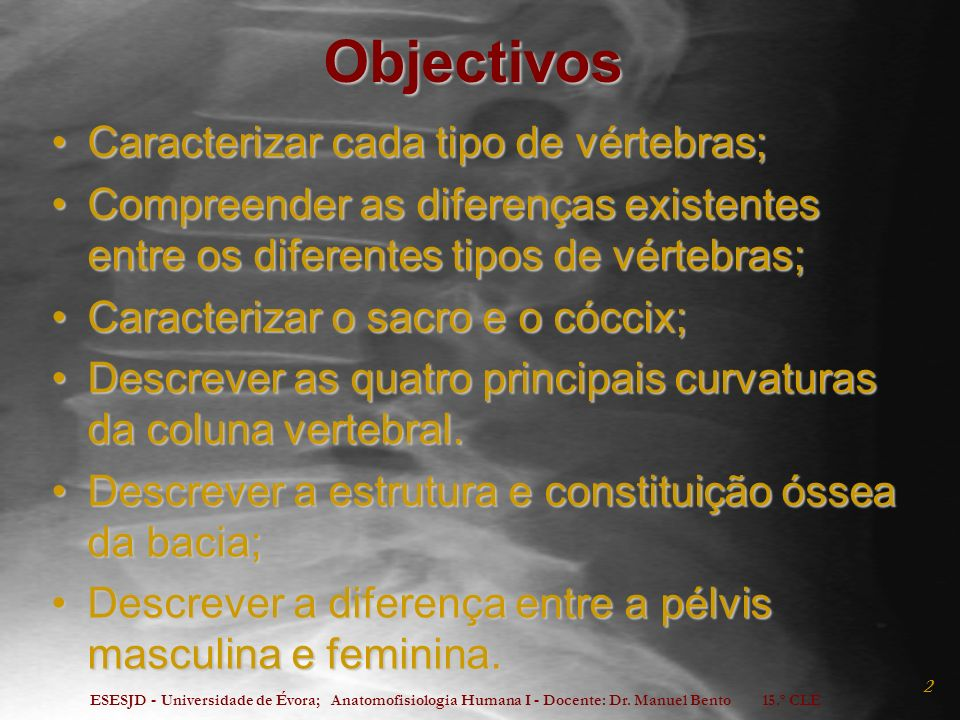 Objectivos Caracterizar cada tipo de vértebras;