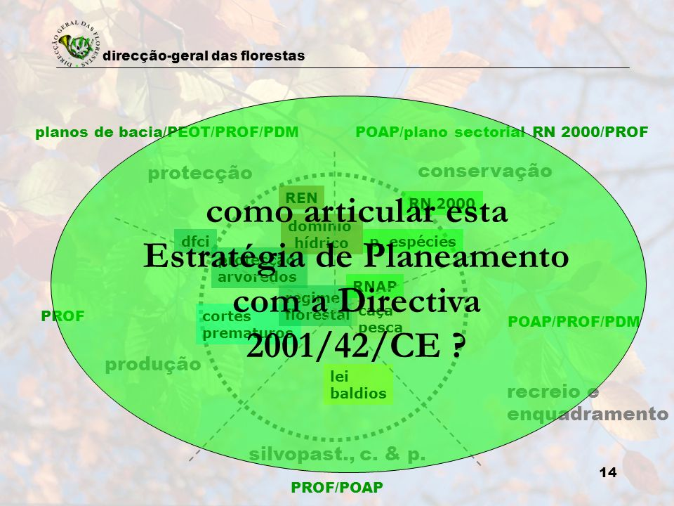planos de bacia/PEOT/PROF/PDM