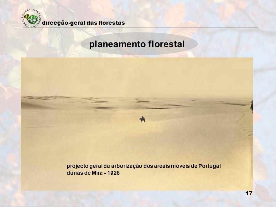 planeamento florestal