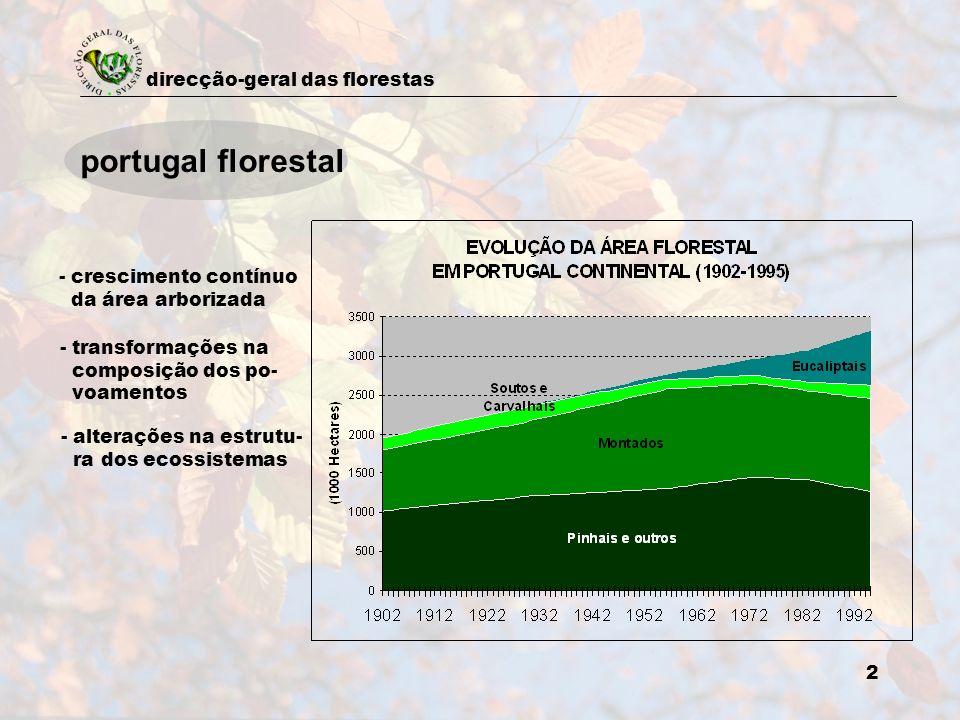 portugal florestal - crescimento contínuo da área arborizada