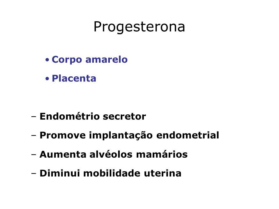 Progesterona Corpo amarelo Placenta Endométrio secretor