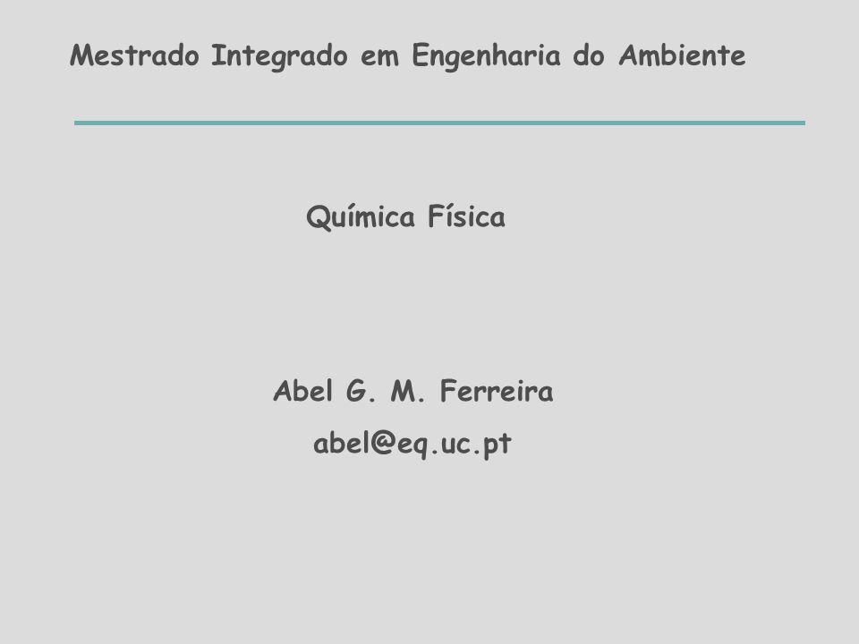 Mestrado Integrado em Engenharia do Ambiente