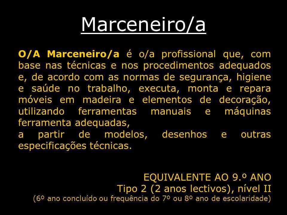 Marceneiro/a