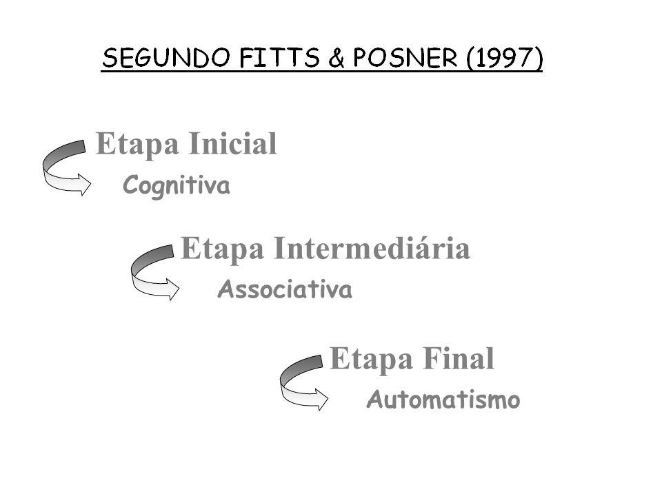 Etapa Inicial Etapa Intermediária Etapa Final Cognitiva Associativa