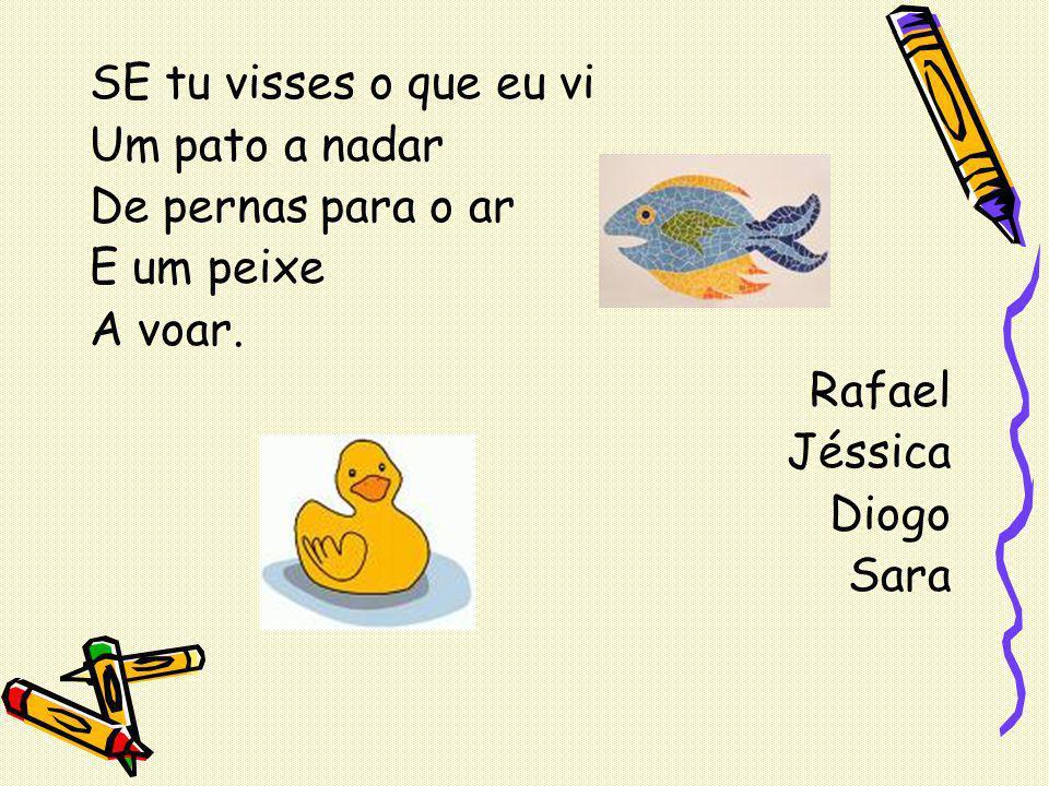 SE tu visses o que eu vi Um pato a nadar. De pernas para o ar. E um peixe. A voar. Rafael. Jéssica.