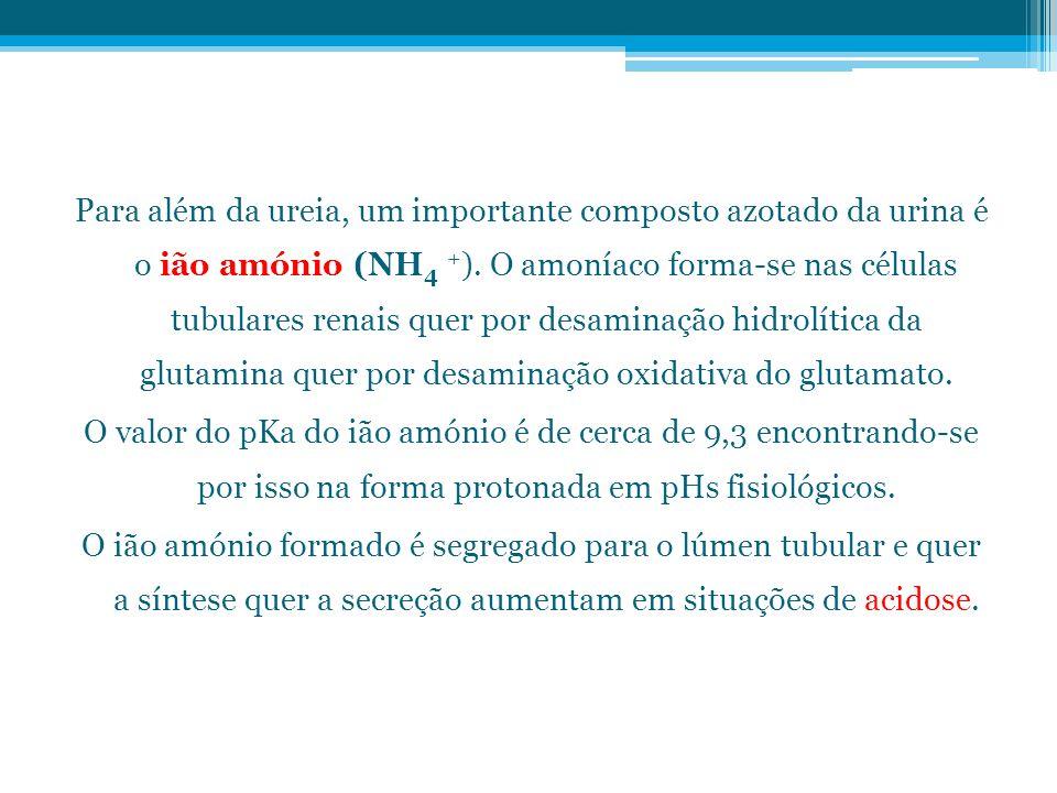 Para além da ureia, um importante composto azotado da urina é o ião amónio (NH4 +).