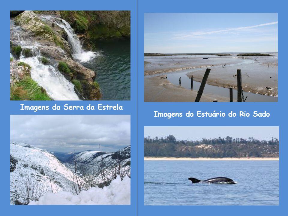 Imagens da Serra da Estrela Imagens do Estuário do Rio Sado