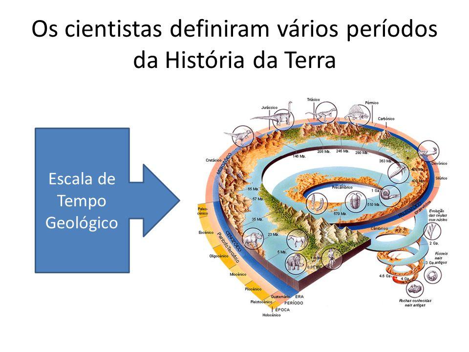 Os cientistas definiram vários períodos da História da Terra