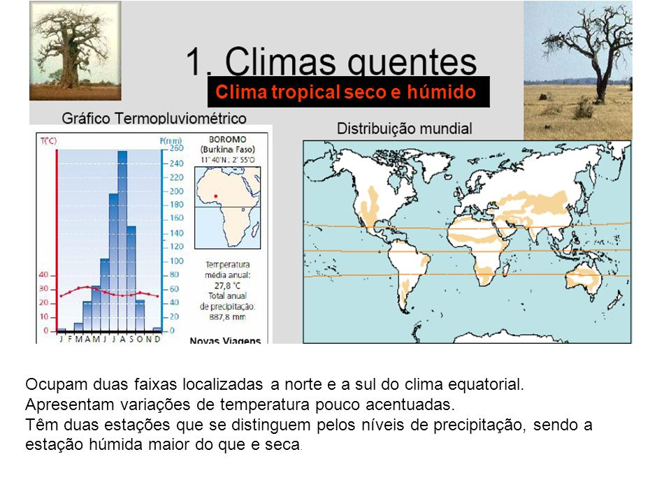Clima tropical seco e húmido