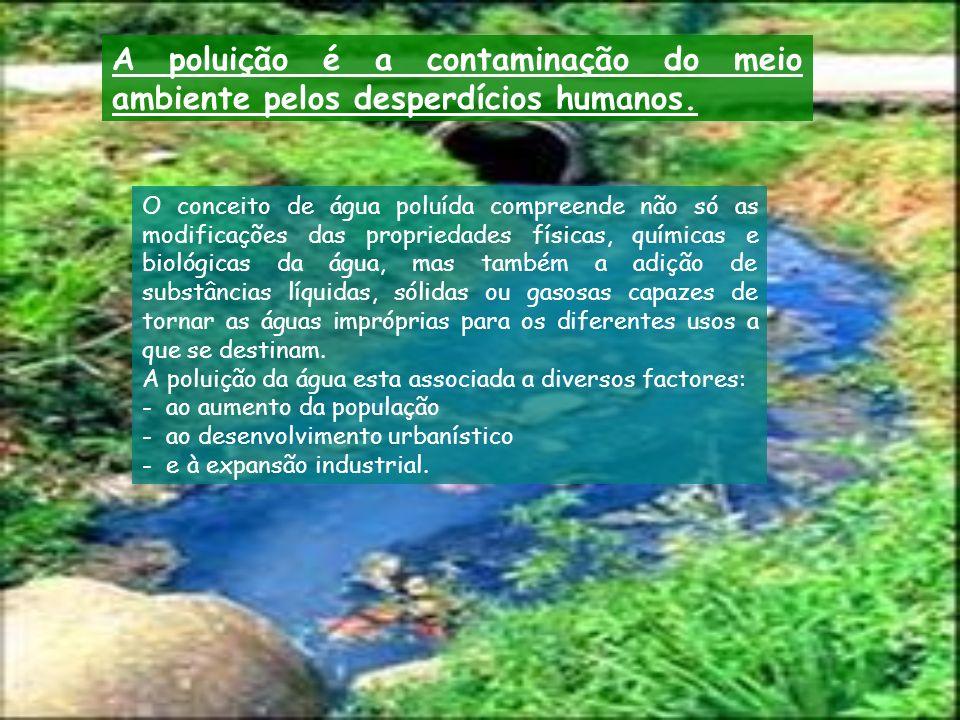 A poluição é a contaminação do meio ambiente pelos desperdícios humanos.