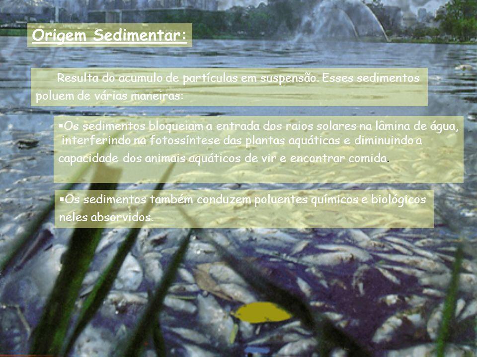 Origem Sedimentar: Resulta do acumulo de partículas em suspensão. Esses sedimentos. poluem de várias maneiras: