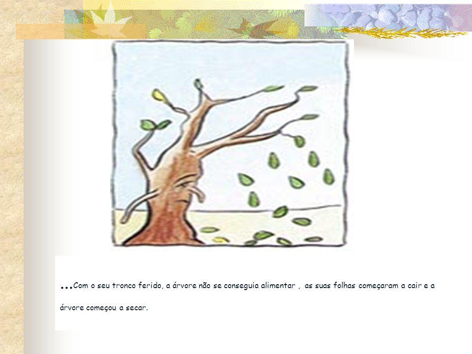 ...Com o seu tronco ferido, a árvore não se conseguia alimentar , as suas folhas começaram a cair e a árvore começou a secar.