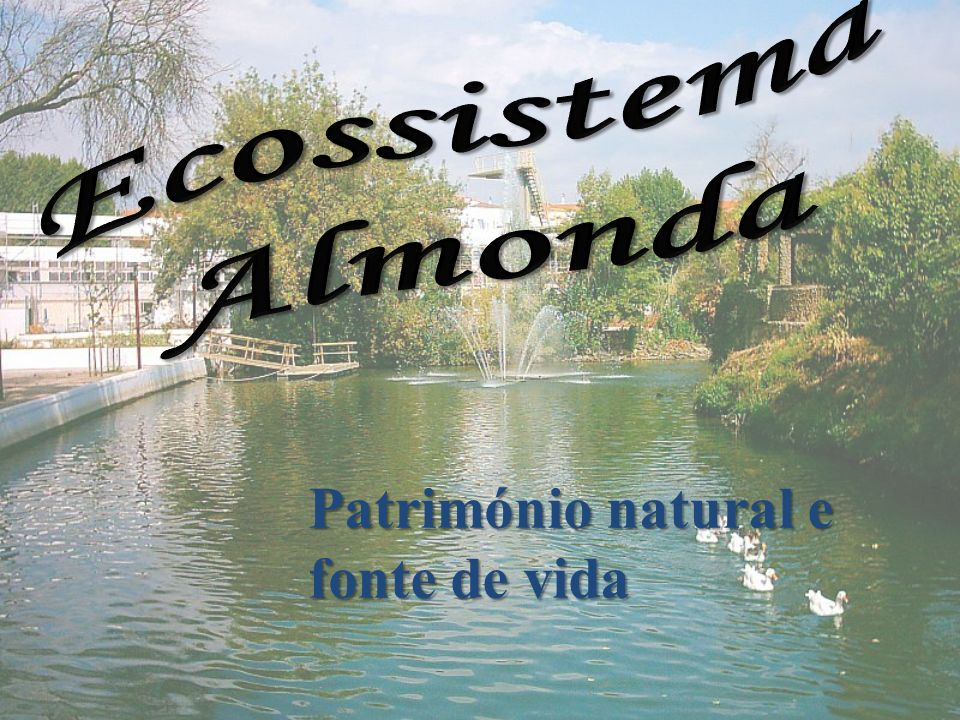 Ecossistema Almonda Património natural e fonte de vida
