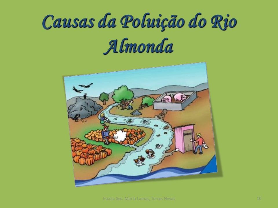 Causas da Poluição do Rio Almonda