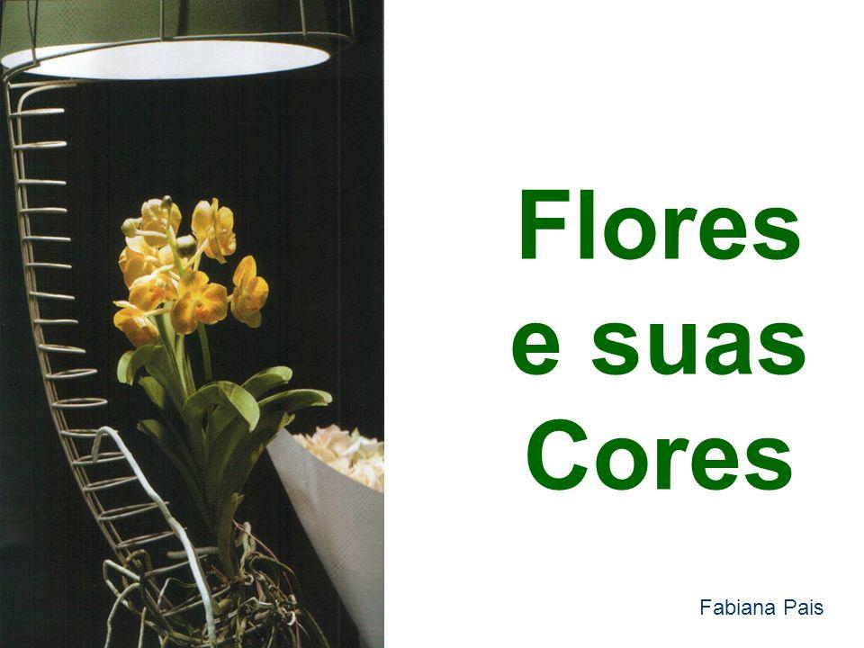 Flores e suas Cores Fabiana Pais