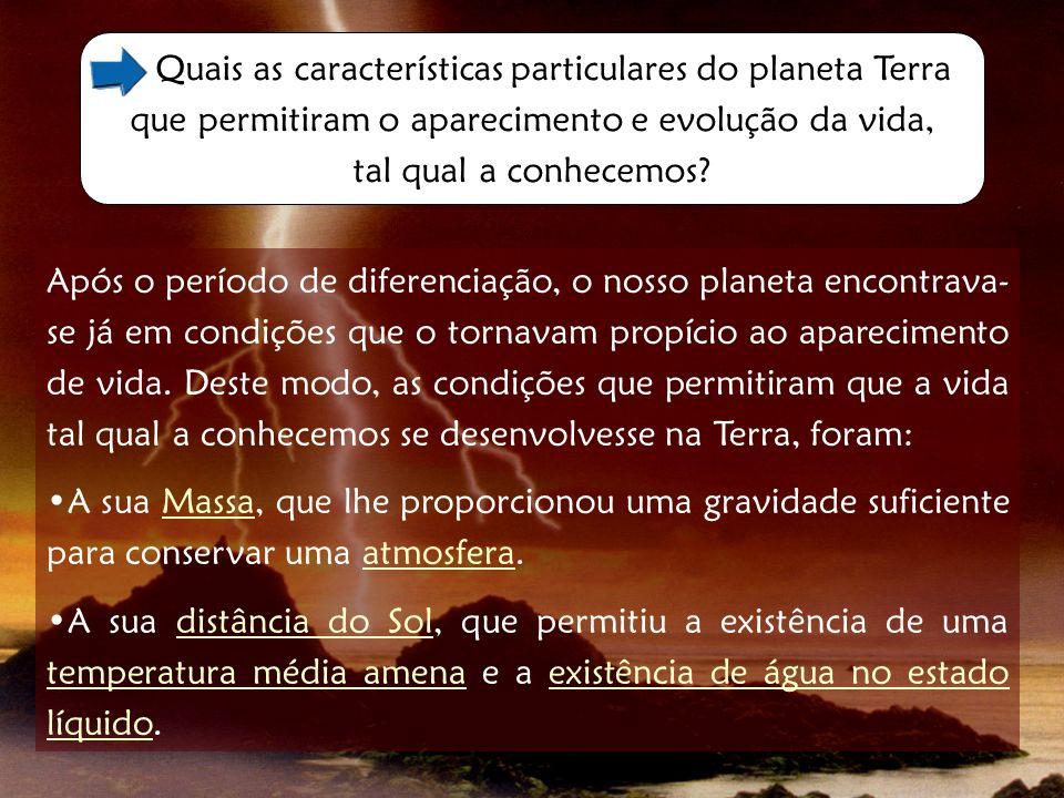 Quais as características particulares do planeta Terra