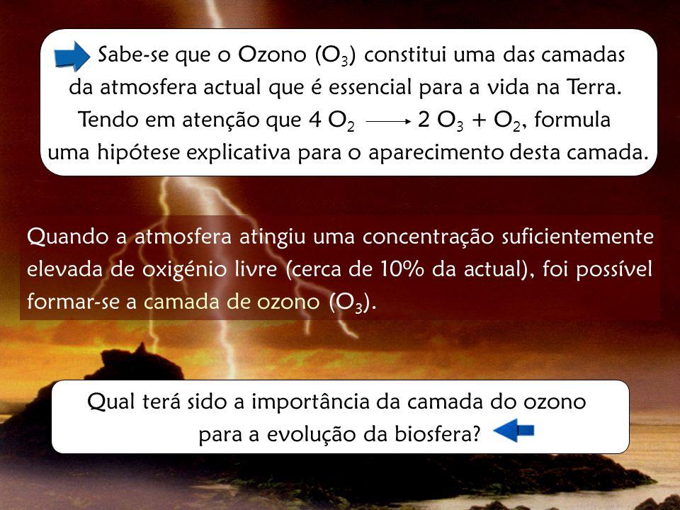 Sabe-se que o Ozono (O3) constitui uma das camadas