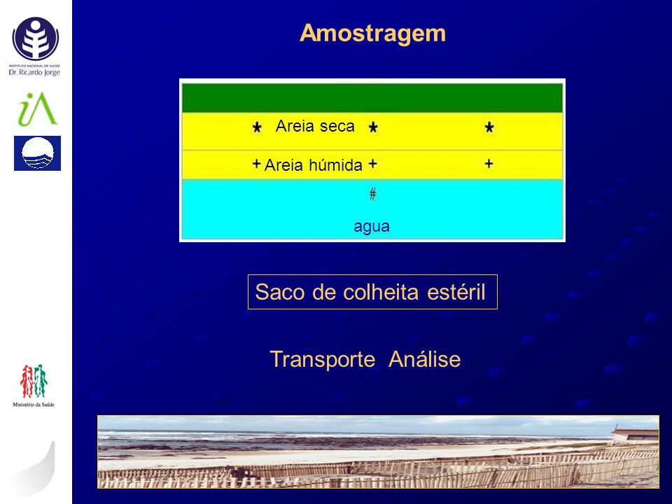 Amostragem Saco de colheita estéril Transporte Análise Areia seca