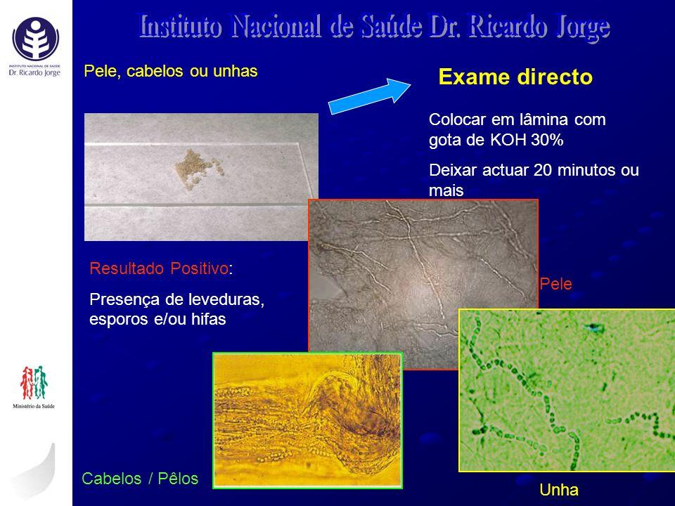 Instituto Nacional de Saúde Dr. Ricardo Jorge