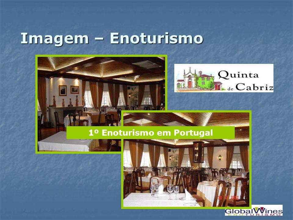 1º Enoturismo em Portugal