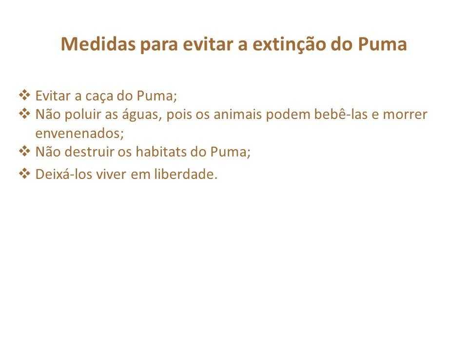 Medidas para evitar a extinção do Puma