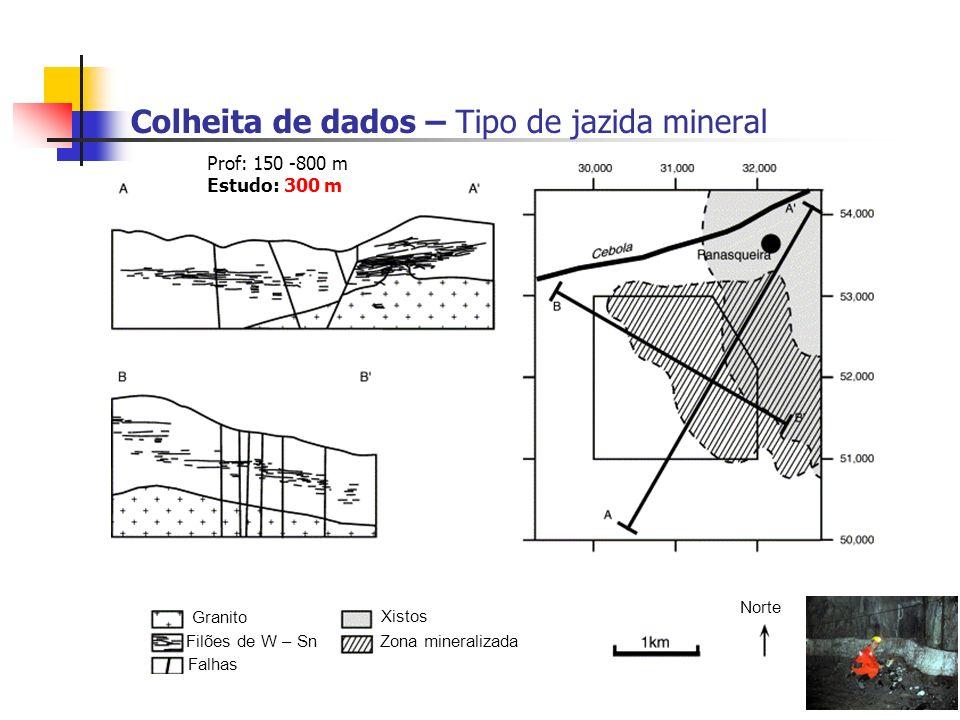 Colheita de dados – Tipo de jazida mineral