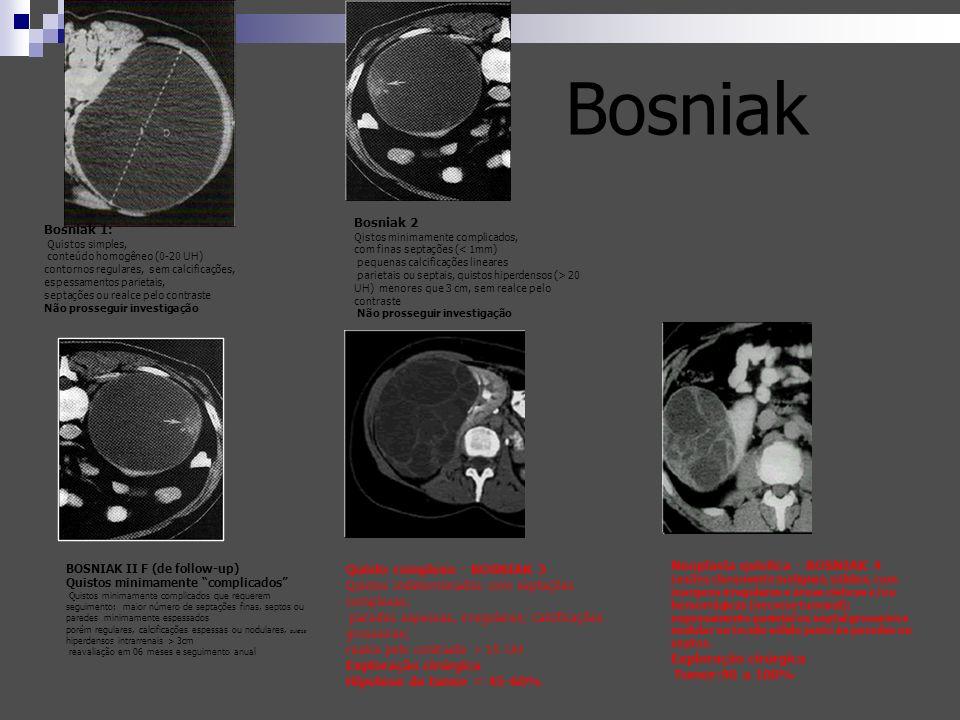 Bosniak Bosniak 2. Qistos minimamente complicados, com finas septações (< 1mm) pequenas calcificações lineares.