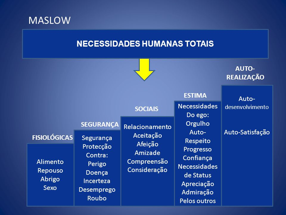 NECESSIDADES HUMANAS TOTAIS