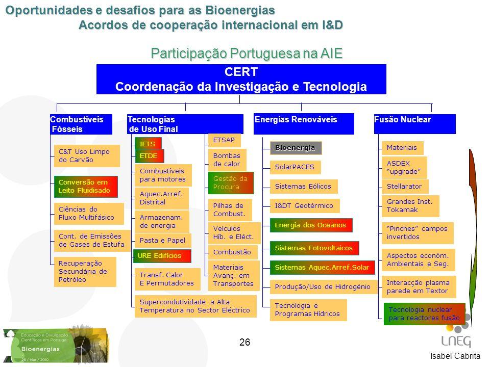 Participação Portuguesa na AIE