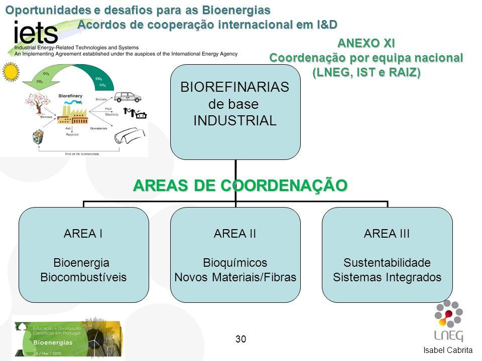ANEXO XI Coordenação por equipa nacional (LNEG, IST e RAIZ)
